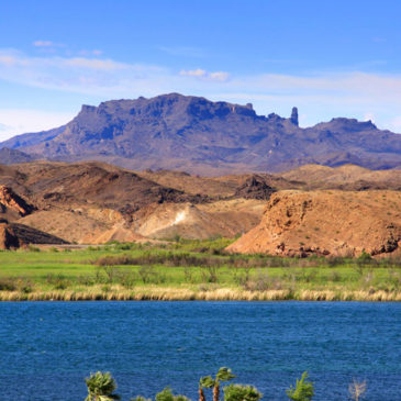 5 Awesome Things to Do in Lake Havasu for Labor Day Weekend